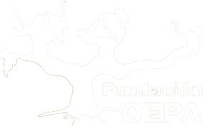 Fundación CEPA