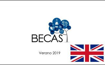 F_Cepa & Becas Reino Unido